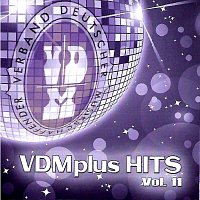 Různí interpreti – VDMplus Hits Vol.11