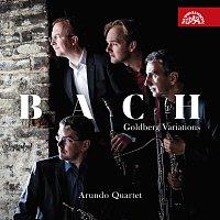 Přední strana obalu CD Bach: Goldbergovské variace