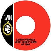 Různí interpreti – Cameo Parkway Vocal Group Gems Of 1964