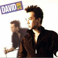 David Huang – David David