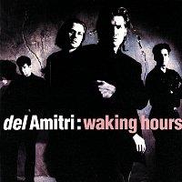 Del Amitri – Waking Hours