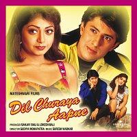 Různí interpreti – Dil Churaya Aapne