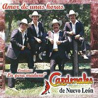 Cardenales De Nuevo León – Amor De Unas Horas