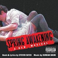 Přední strana obalu CD Spring Awakening