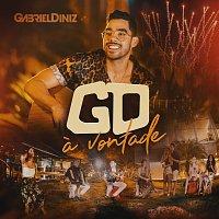 Gabriel Diniz – A Vontade