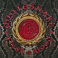 Whitesnake – Flesh & Blood