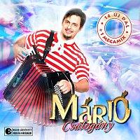 Mario – Csalogany