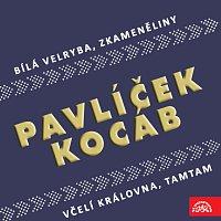 Michael Kocáb, Michal Pavlíček – Pavlíček, Kocáb