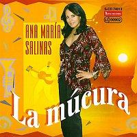 Ana Maria Salinas – La múcura