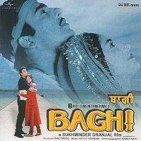 Různí interpreti – Baghi