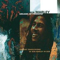 Bob Marley – Dreams Of Freedom