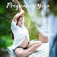Přední strana obalu CD Pregnancy Yoga