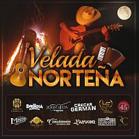 Různí interpreti – Velada Nortena