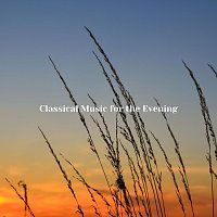 Chris Snelling, Robyn Goodall, James Shanon, Jonathan Sarlat, Nils Hahn – Classical Music for the Evening