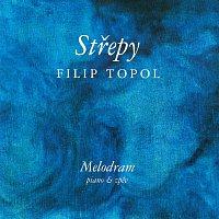 Filip Topol – Střepy