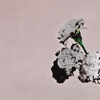 John Legend – Love In The Future (Special Edition)