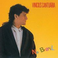 Vinicius Cantuaria – Nu Brasil