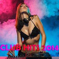 Různí interpreti – Club Hits 2014