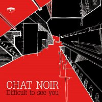 Chat Noir – Difficult to see you