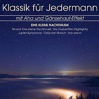 Various Artists.. – Klassik fur Jedermann: Eine Kleine Nachtmusik