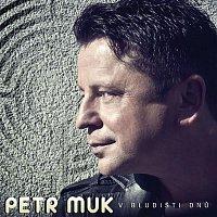 Petr Muk – V bludišti dnů