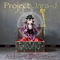 Project Jara-J – V Klidu - Ambient Collection 2010-2015