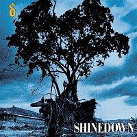 Shinedown – Simple Man