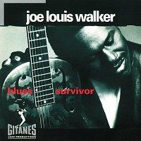 Joe Louis Walker – Blues Survivor