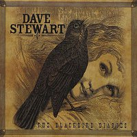 Dave Stewart – The Blackbird Diaries