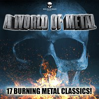 Různí interpreti – A World Of Metal