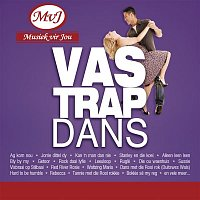 Various  Artists – Vastrap Dans