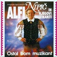 Alfi Nipič – Ostal bom muzikant