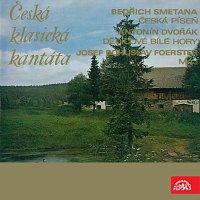 Přední strana obalu CD Smetana, Dvořák Foerster: Česká klasická kantáta