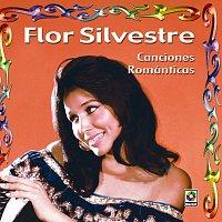 Flor Silvestre – Canciones Románticas