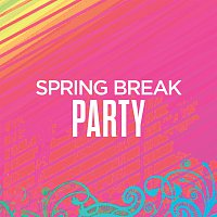 Různí interpreti – Spring Break Party