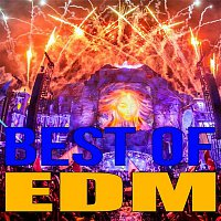 MrLonely Wolf – Best Of EDM