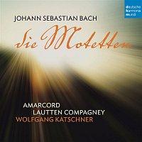 Lautten Compagney, Johann Sebastian Bach – Bach: Die Motetten