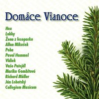 Various  Artists – Domáce Vianoce