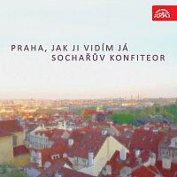 Praha, jak ji vidím já / Sochařův konfiteor