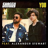 Shaggy – You (feat. Alexander Stewart)