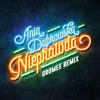 Ania Dabrowska – Nieprawda (Gromee Remix)