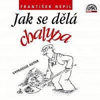František Nepil – Nepil: Jak se dělá chalupa