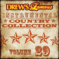 The Hit Crew – Drew's Famous Instrumental Country Collection [Vol. 29]