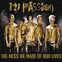 My Passion – The Mess We Made Of Our Lives