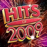 Různí interpreti – Hits Of 2009