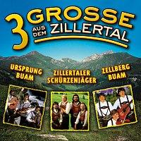 Různí interpreti – 3 Grosse aus dem Zillertal, Folge 1