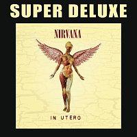 Nirvana – In Utero - 20th Anniversary Super Deluxe