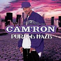 Cam'Ron – Purple Haze
