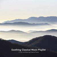 Chris Snelling, Max Arnald, James Shanon, Nils Hahn, Chris Mercer, Jonathan Sarlat – Soothing Classical Music Playlist: 12 Calm and Relaxing Classical Pieces