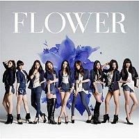 Flower – Still - Christmas Version